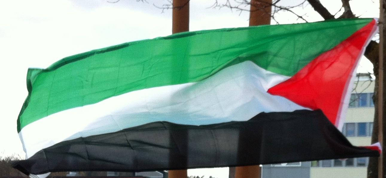 fangedag flag